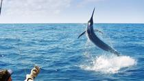 Deep Sea Fishing, Ocho Rios, Day Trips