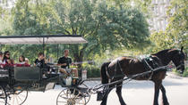 Historic Savannah Horse and Carriage Tour, Savannah, Horse Carriage Rides
