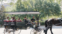Horse & Carriage and Crimson Trails Walking Tour Combo, Savannah, Horse Carriage Rides