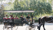 Horse & Carriage and Passing the Torch Walking Tour Combo, Savannah, Horse Carriage Rides
