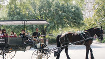Horse and Carriage Tour of Historic Savannah, Savannah