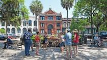 Savannah Trolley and Historic Walking Tour Combo