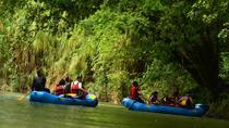 Nature Wildlife Safari Float Tour from La Fortuna-Arenal, La Fortuna, White Water Rafting & Float...