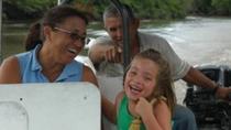Mangrove Safari Boat Cruise and Pottery Village from Guanacaste, Playa Hermosa, Nature & Wildlife