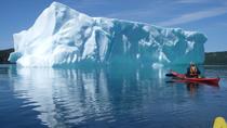 Trinity Tow 'N' Go Kayak Tour, Newfoundland & Labrador, Kayaking & Canoeing