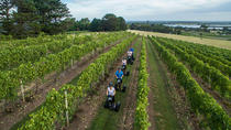 Coolangatta Vineyard Segway Tour, New South Wales, Segway Tours