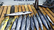 Private Halbtages-Angelcharter in Nassau, Nassau, Fishing Charters & Tours