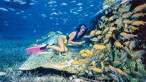 Private Half-Day Snorkeling Charter in Nassau, Nassau, Fishing Charters & Tours