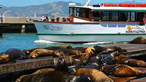 Wine Tasting Cruise on the San Francisco Bay, San Francisco, Day Cruises
