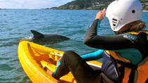 Byron Bay Combo: Hinterland Tour Including Minyon Falls and Kayaking with Dolphins, Byron Bay, null