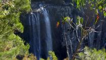Byron Bay Hinterland Tour Including Rainforest Walk to Minyon Falls, Byron Bay, Day Trips
