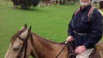 Private Horseback Riding Tour in Bogotá, Bogotá, Private Sightseeing Tours