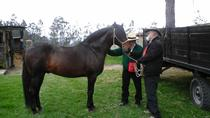 Private Horseback Riding Tour Including Lunch, Bogotá, Private Sightseeing Tours