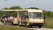 Tour guidato dei tram delle Everglades della Shark Valley, Everglades National Park, Nature & ...