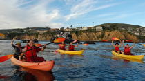 Laguna Beach Kayak Tour with Sea Lion Viewing, Laguna Beach