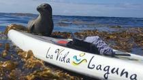 Laguna Beach SUP Lesson and Tour, Laguna Beach, Stand Up Paddleboarding