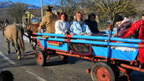 Velebit Nature Park: Full Day Wagon Ride Activity, Zadar