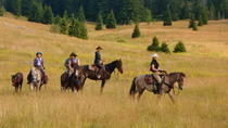 Velika Plana Valley: 2-Hour Horseback Trail Ride and Lunch, Central Croatia, Horseback Riding