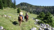 Velika Plana Valley: Full Day Horseback Riding Experience, Zadar, Horseback Riding