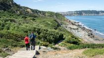 3-Hour Bridge to Beach Private Hike in San Francisco, San Francisco, Hiking & Camping