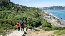 Bridge to Beach Private Hike in San Francisco, San Francisco, Hiking & Camping