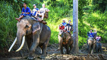 Full Day Elephant Ride and Rafting Adventure Combo from Chiang Mai, Northern Thailand, null