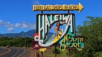 Private Full-Day North Shore of Oahu Tour, Oahu, Private Sightseeing Tours