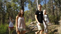 Tagesausflug zu den Blue Mountains, Sydney, Day Trips