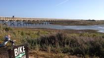 Bike Tour in Ria Formosa Natural Park, Faro, Bike & Mountain Bike Tours