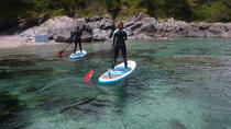 Helford River 2-Hour Stand-Up Paddle Boarding Tour in Falmouth