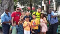 Nassau Shore Excursion: Cultural Heritage Sightseeing Tour, Nassau