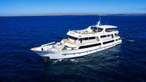 5-tägige luxuriöse Galapagos-Bootstour an Bord der Odyssey, Galapagos Islands, Multi-day Cruises
