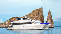 Galapagos Islands Cruise: 4-Day Cruise Aboard the 'Archipel II', Galapagos Islands, Multi-day ...