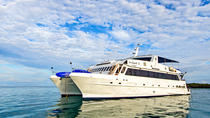 Galapagos Islands Cruise: 5-Day Cruise Aboard the Archipel I, Galapagos Islands, Multi-day Cruises