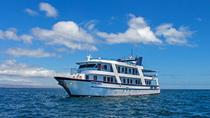 Galapagos Islands Cruise: 5-Day Tour from San Cristobal Aboard the 'San Jose', Galapagos Islands, ...