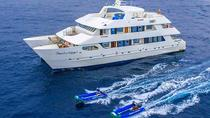 Galapagos Islands Cruise: 7-Days Catamaran Sail Aboard the 'Catamaran Treasure of Galapagos', ...
