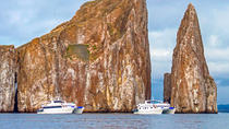 Galapagos Islands Cruise: 8-Day Cruise Aboard the 'Archipel II', Galapagos Islands, Multi-day ...