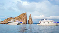 Galapagos Islands Cruise: 8-tägige Kreuzfahrt an Bord des 'Archipel I', Galapagos Islands, Multi-day Cruises