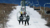 Mammoth Mountain Performance Ski Rental Including Delivery, Mammoth Lakes, Ski & Snowboard Rentals