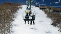 Mammoth Mountain Premium Ski Rental Including Delivery, Mammoth Lakes, Ski & Snowboard Rentals