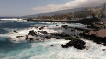 North Tenerife Historical Cities and Winery, Tenerife, Wine Tasting & Winery Tours