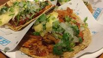 Tacos, Salsas and Mezcales in La Condesa in Mexico City, Mexico City, Food Tours