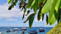 Tropical Island Tour Including Itaparica Island, Salvador da Bahia, Day Cruises
