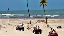 White Sand Dunes of Mangue Seco Full Day Private Tour from Salvador, Salvador da Bahia, Day Trips
