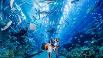VIP Dubai Aquarium, Dubai, Attraction Tickets