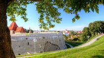 Private Tour: Vilnius Panoramic Views Walking Tour through the Republic of Uzupis, Vilnius, null