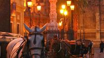 Horse and Buggy Ride in Seville , Seville, City Tours