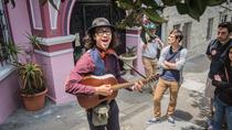 Haight-Ashbury San Francisco Tour: A Musical Trip of the 60's, San Francisco, Day Trips