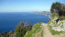 Path of the Gods Hiking Tour from Sorrento, Sorrento, Hiking & Camping