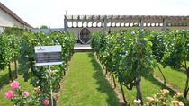 Full-Day Combo Tour from Odessa: Akkerman Fortress and Shabo Wine Center with Tasting, Odessa, ...